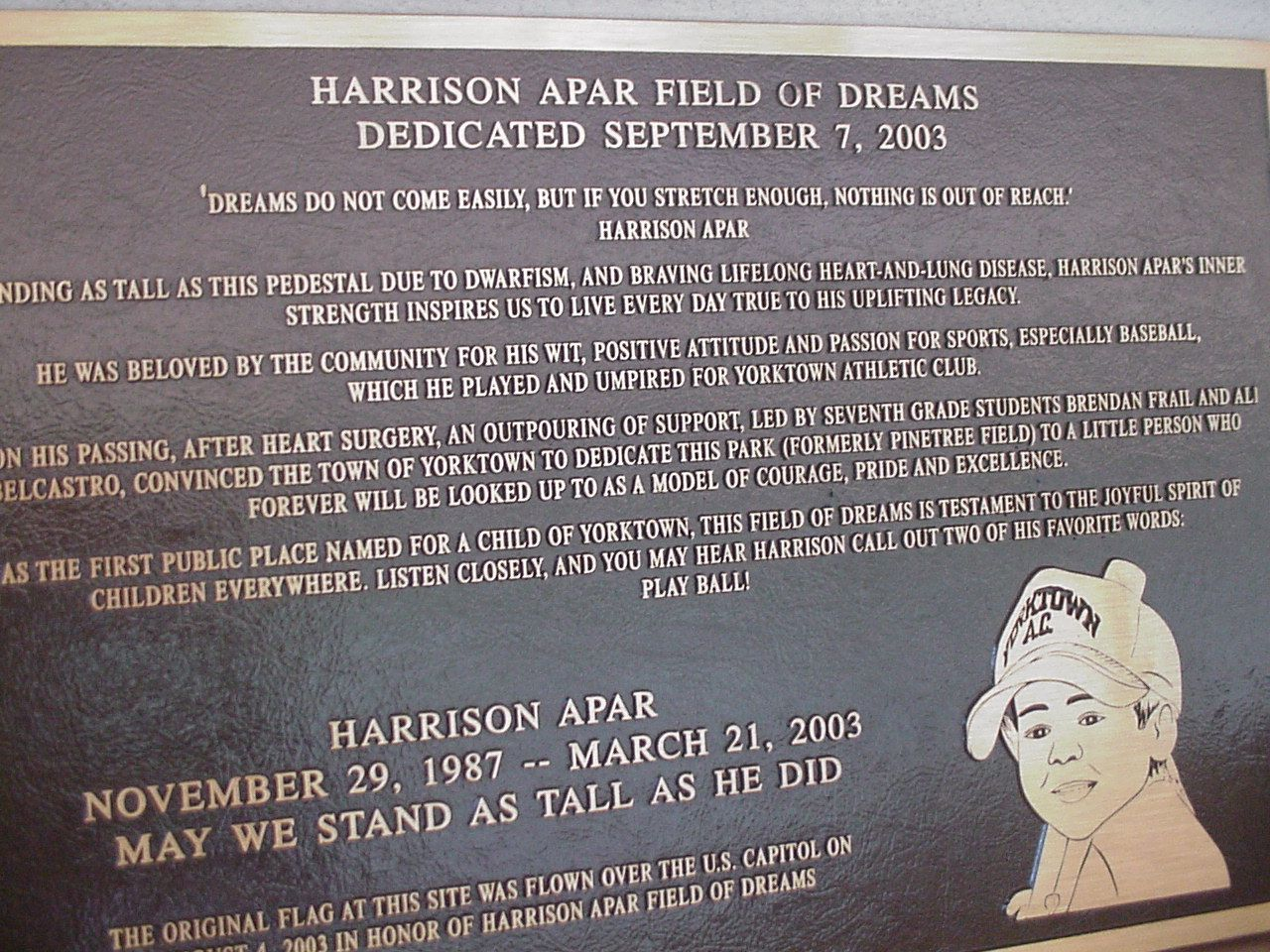HAFD plaque